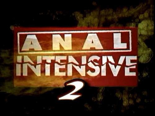 Anal intensive 2 (2004) SATRip