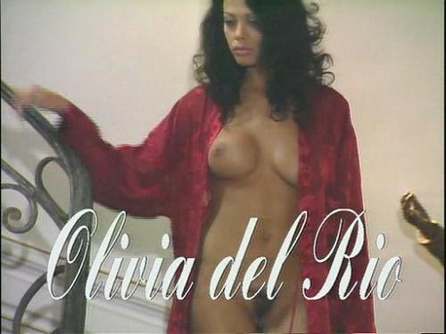 !porno_giganten_xxx_german-divx (2009) DVDRip
