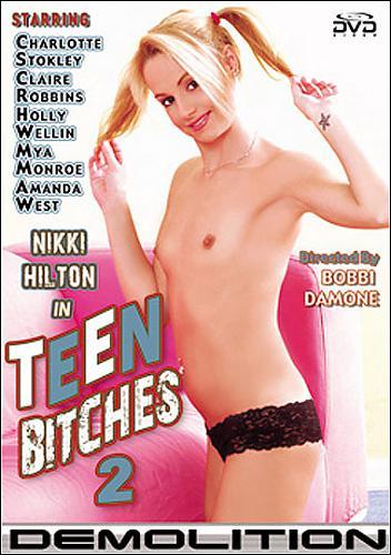 Teen Bitches №02 / Малолетние проститутки №02 (2010) DVDRip