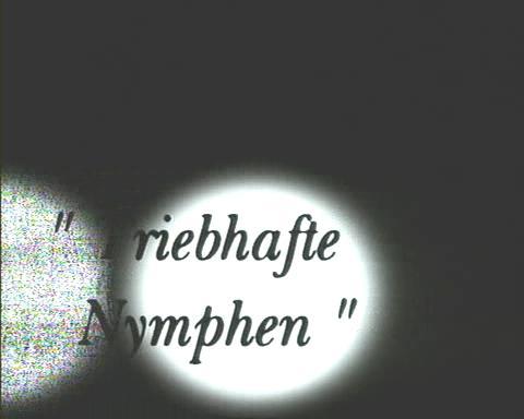 Junge Debutantinnen Triebhafle Nymphen Молодые Дебютантки  (2000) DVDRip
