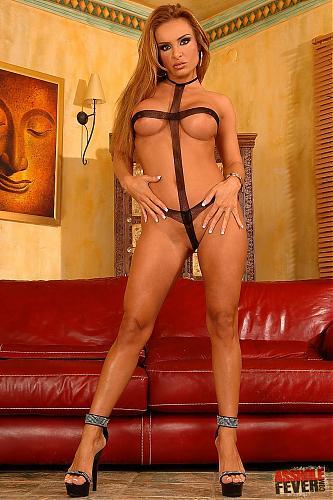 Anal fan(Assholefever.com) (2007) HDTV