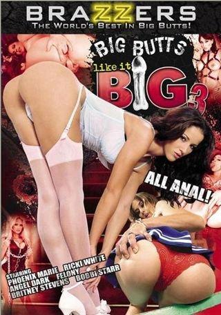 Big Butts Like It Big 3 (2009) DVDRip