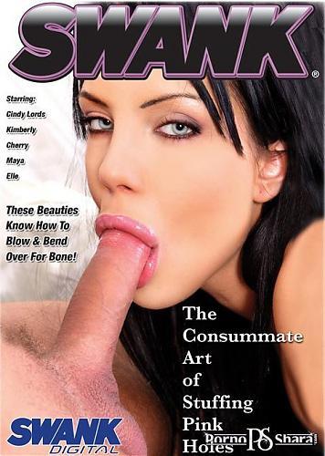The Consummate Art of Stuffing Pink Holes. / Искусство Кончать В Наполнении Розовых Отверстий. (2009) DVDRip