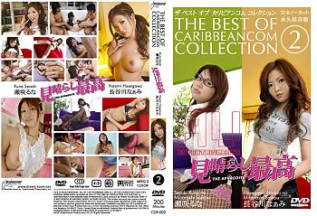 The Best Caribbeancom Collection Vol 2 CD1 (2007) DVDRip