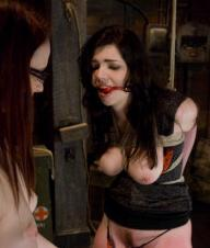 Whipped.Ass - Nicotine.and.Claire.Adams (2009) SATRip