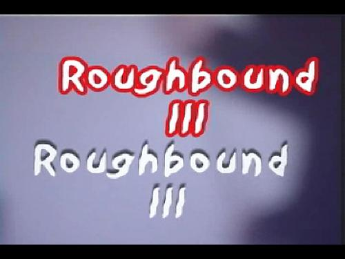 Rough Bound 3 (2009) DVDRip