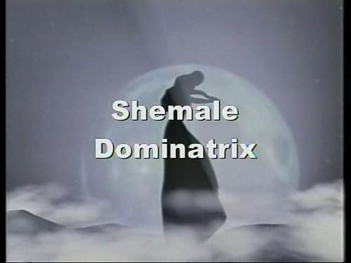 SMB-004-MFX Shemale Dominatrix (2009) DVDRip
