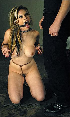 Fucked and bound 0058 (2009) Other