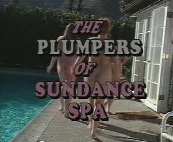 Пышки в бассейне / Plumpers Of Sundance Spa (1993) DVDRip