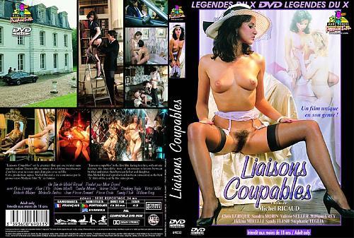 Liaisons coupables/ Преступные связи  (Marc Dorcel) (1987) DVDRip