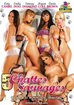 5 Chattes Sauvages (Wild Cats) / Дикие кошки  (Marc Dorcel)  (2008) DVDRip