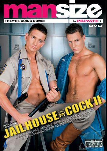 Jailhouse Cock 2 / Тюремный член 2 (2006) DVDRip