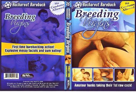 Bucharest Bareback Breeding Virgins / Развратные Парни из Бухареста (2006) DVDRip