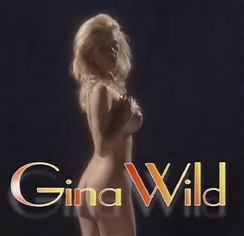 Gina Wild - Durchgefickt (1999) DVDRip