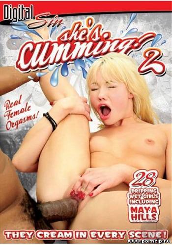 У неё оргазм! 2 / She's Cumming # 2  (2008) DVDRip