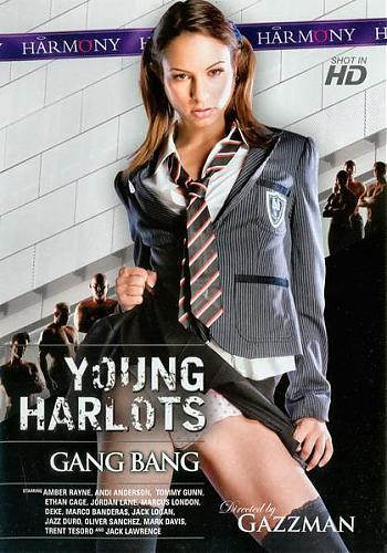 Young Harlots Gang Bang / Молодая Групповуха Проституток (2009) DVDRip