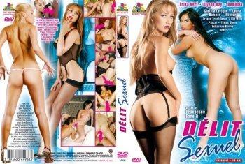 Delit sexuel  (Marc Dorcel) (2006) DVDRip