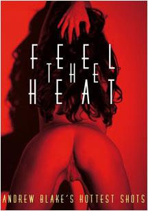 Feel the Heat - Andrew Blake (2004) DVDRip