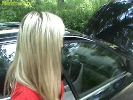 Трах на природе в авто (2009) CamRip