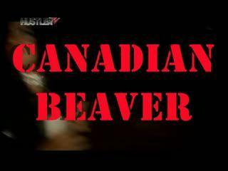 Canadian beaver (2007) DVDRip