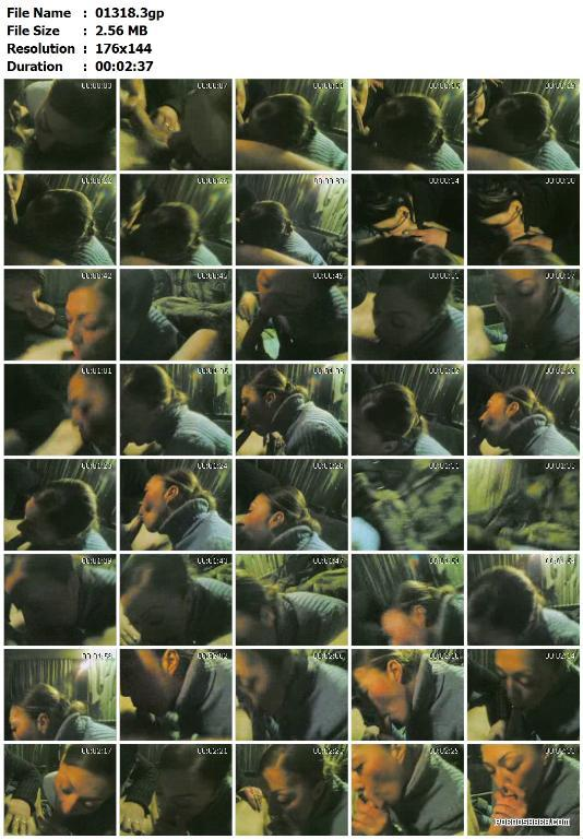 Архив любительских съемок с мобильного телефона 6 (222 ролика) (2008) Other