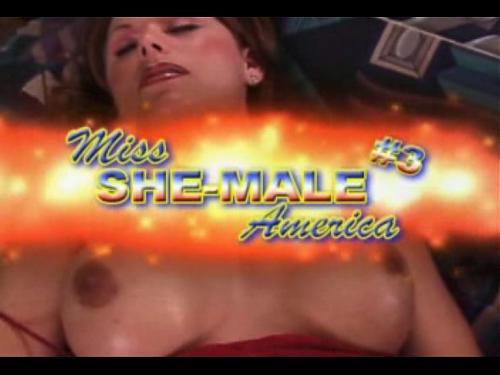 Miss She Male America #3 (2007) DVDRip