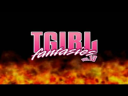 T-Girl Fantasies#13 (2009) DVDRip