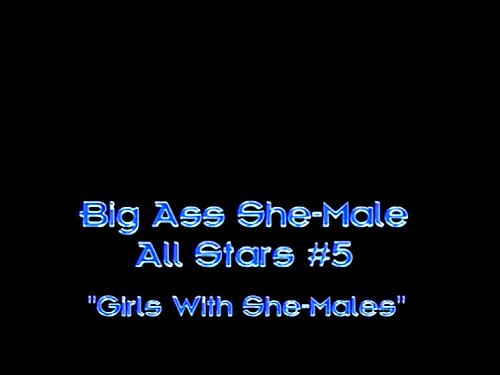 Big Ass SheMale All Stars  №5 (2008) DVDRip