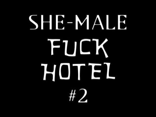 Shemale Fack Hotel #2 (2009) DVDRip