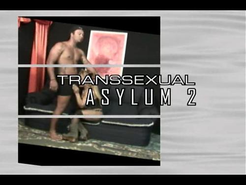 Transsexual Asylum 2 (2009) DVDRip