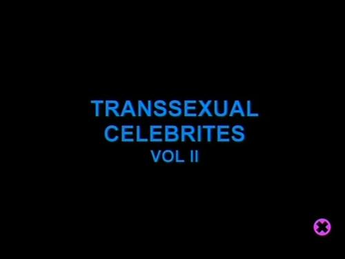 Shemale-Transsexual Celebrites vol.2 (2002) DVDRip