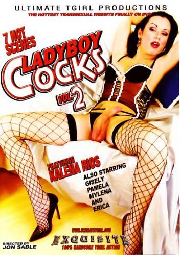 LadyBoy Cocks#2 cd1 (2009) DVDRip