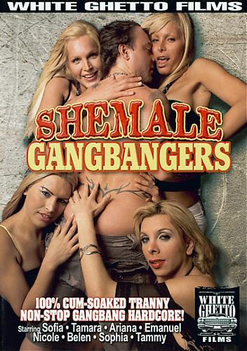 Shemale Gangbangers 1 (2008) DVDRip