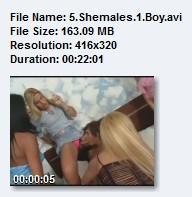 5 Shemales 1 Boy (2009) DVDRip