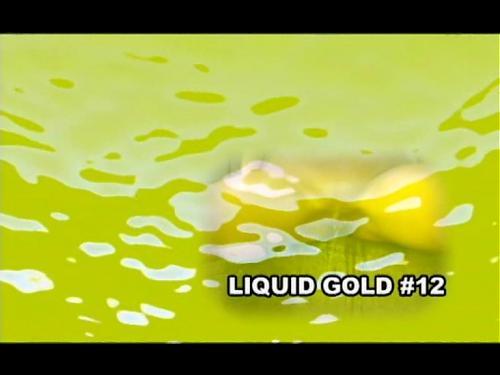LIQUID GOLD 12 (2009) DVDRip