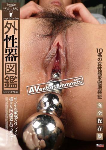 Female Reproductive / Женские половые органы (гинекологическое изучение) [RED-117] [2010 г., asian, pussy, DVDRip] (2010) DVDRip
