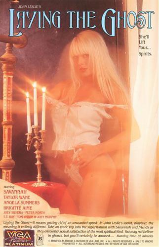 Laying The Ghost / Под видом призрака (1991) DVDRip