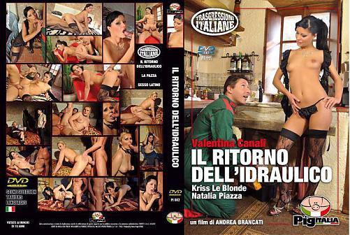 Il Ritorno Dell'Idraulico (Возвращение Сантехника) (2010) DVDRip