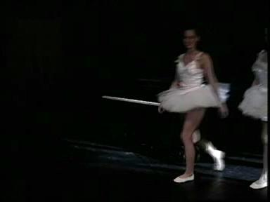 Балет 2(German Teen Ballerina orgi) (2007) DVDRip