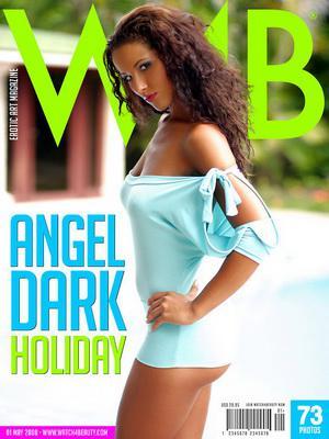 Групповушка с красивейшими девушками / Angel Dark, Natalli DiAngelo, Cindy Behr (2010) DVDRip