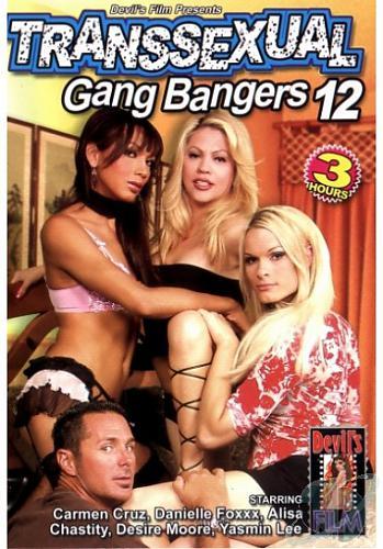 Транссексуальная групповуха 12/Transsexual Gang Bangers 12 (2010) DVDRip