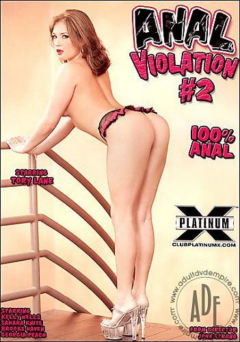 Анальное изнасилование 2 / Anal Violation#2 (2007) DVDRip