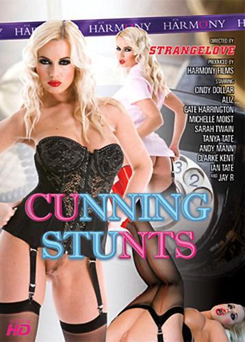 Cunning Stunts (2009) DVDRip